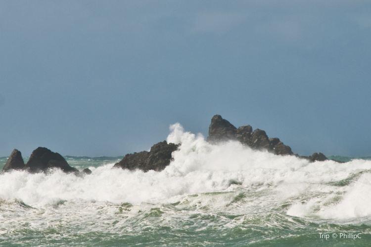 Island Bay2