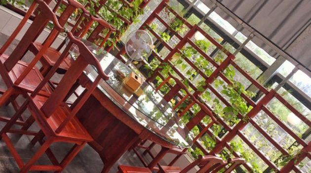 鱘龍魚主題生態餐廳2