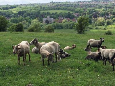 Millets Farm Centre