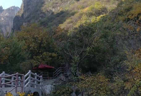Changhe Park