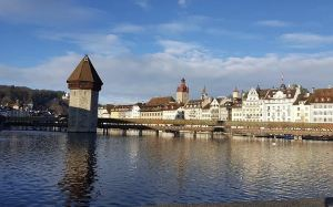 Lucerne,Recommendations