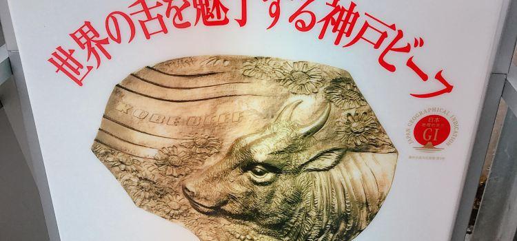Kobe Beef SEN