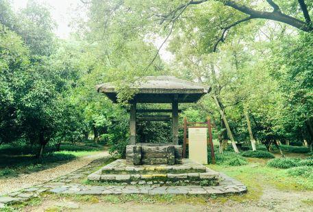 Yancheng Ruins Park