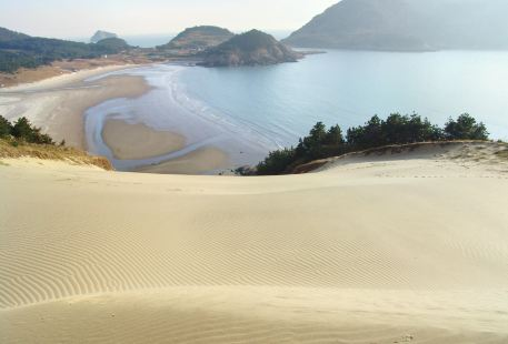 우이도모래사막