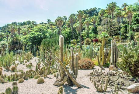 巴塞羅那植物園