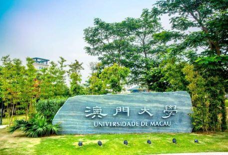 마카오 대학교