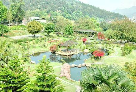 Wuzhou Zoo