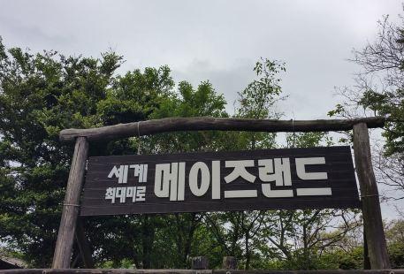 동화속으로-미로공원