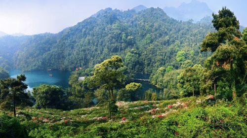 Dinghu Mountain