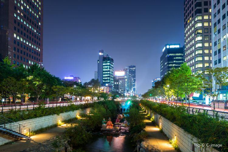 首爾廣場1