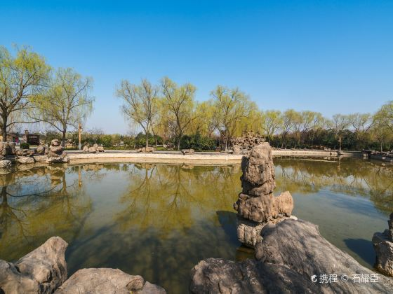 Sui and Tang Dynasty Town Botanic Gardens