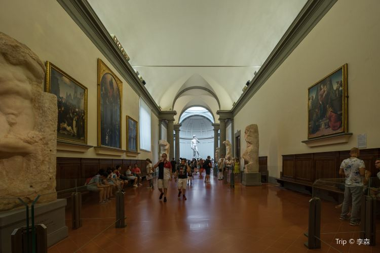Academy Of Florence Art Gallery4