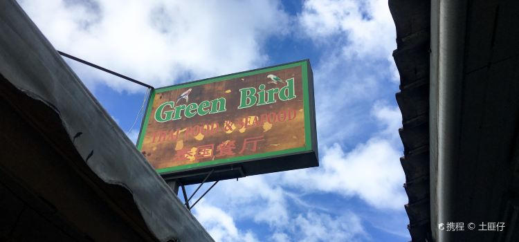 Green Bird3