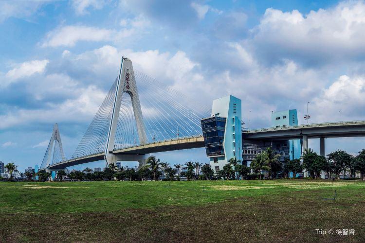 海口世紀大橋4