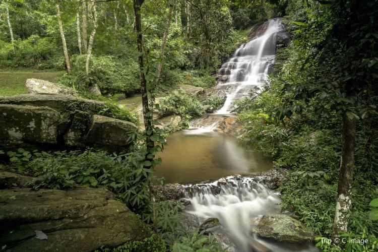 Doi Suthep-Pui National Park1
