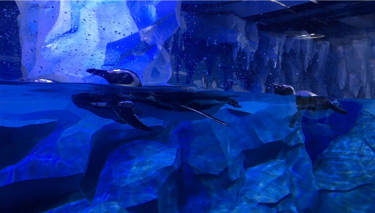 Xuzhou Underwater World2
