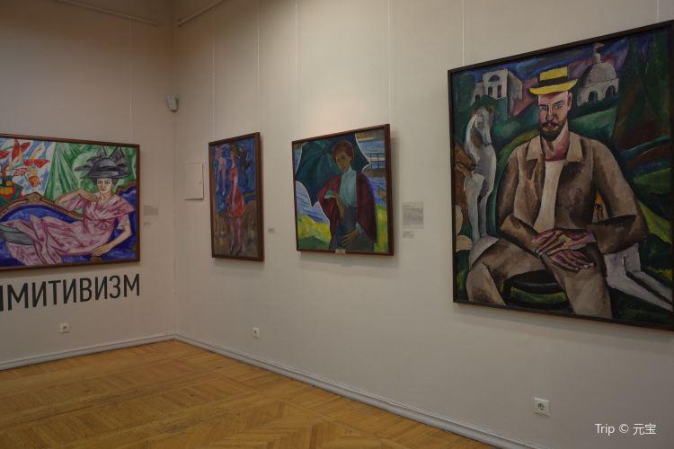 Museum of Fine Arts1