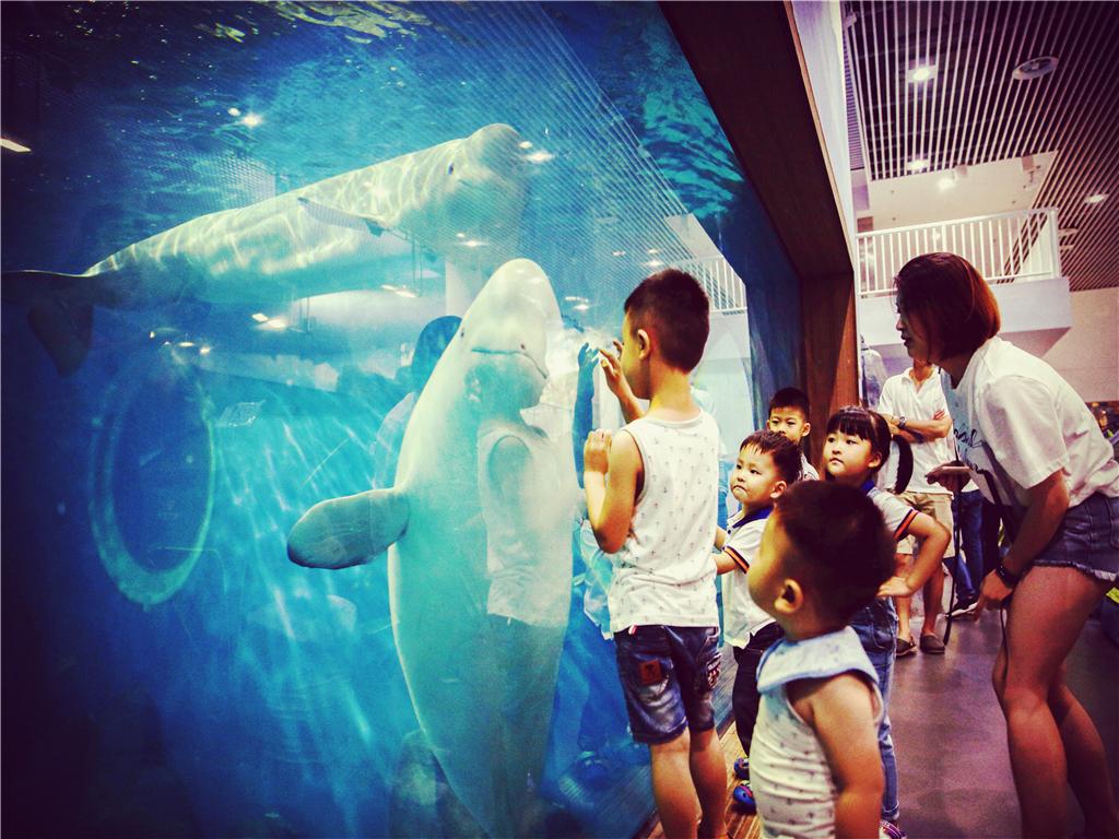 뤄위안완(나원만) 해양세계(하이양스제)