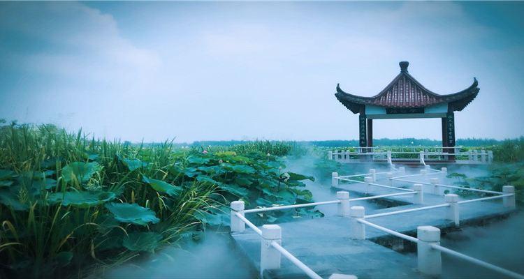 Huai'an Jinhu Hehuadang Scenic Area3