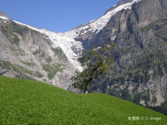 Oberer Gletscher