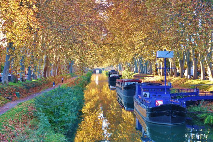 Canal du Midi1