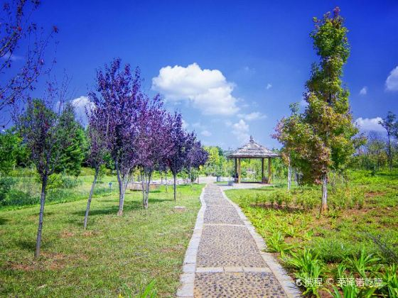 Heyuan Songming Garden Expo Park