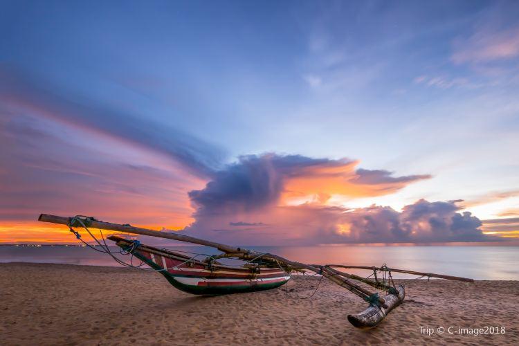 Negombo Beach2