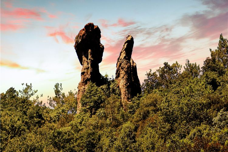 Ruiyun Mountain Forest Park3