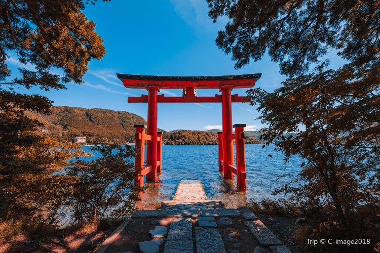 蘆之湖遊船2