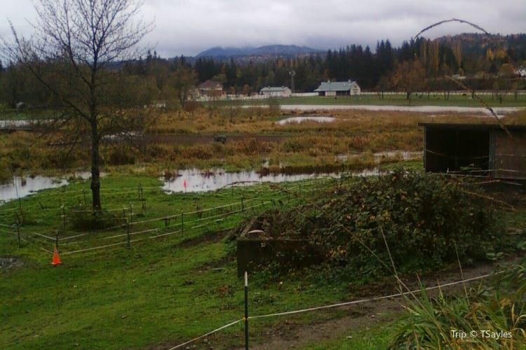 Fall City Farms1
