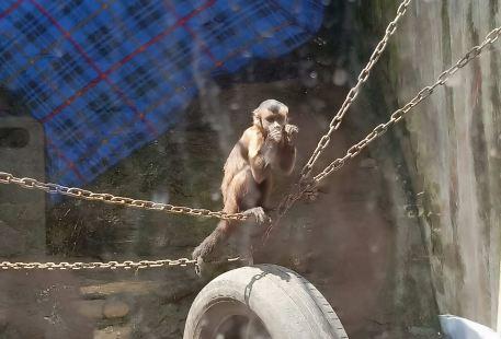 Huju Zoo
