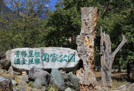 Golden Monkey National Park
