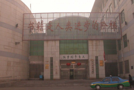 Dongying Library