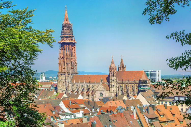 프라이부르크 대성당