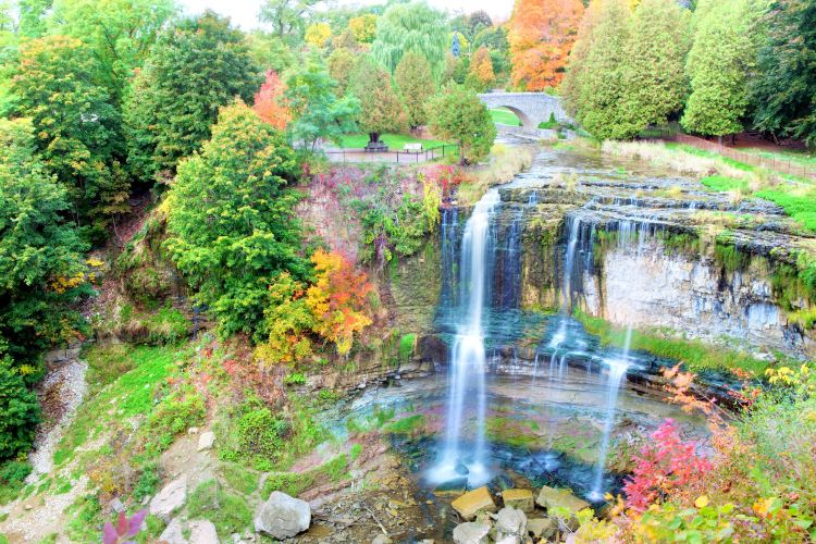 Webster's Falls Conservation Area