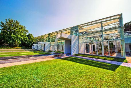 Orto Botanico dell'Universita di Padova
