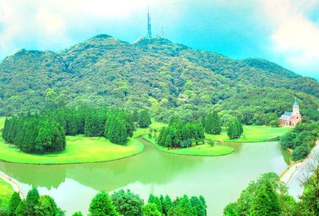 Darong Mountain Forest Park