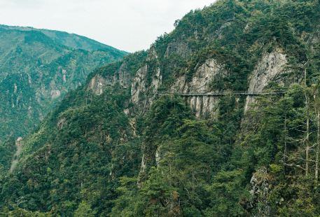 다밍산 관광지(대명산 관광지)