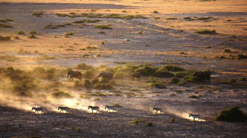 Ambosele Nation Park