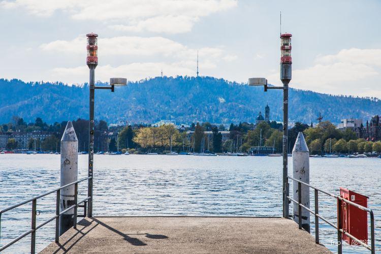 Lake Zurich4