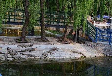 Lanling'eyu Amusement Park