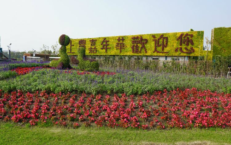 Guangming Ecological Park1