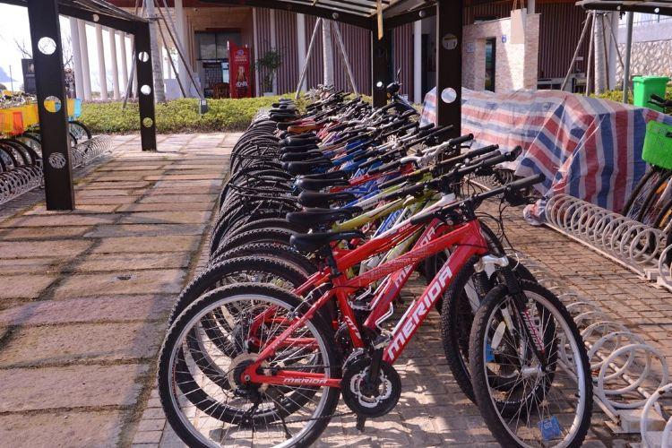첸다오 호수 자전거 일주3