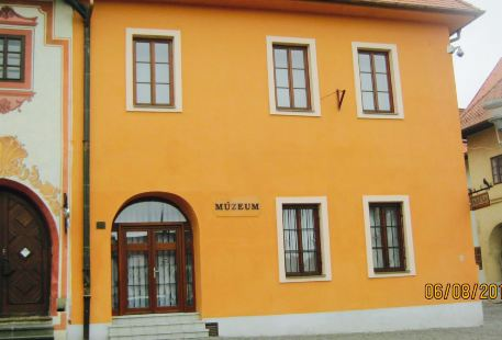Icon Museum (Saris)