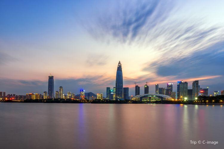 Shenzhen Bay Park3