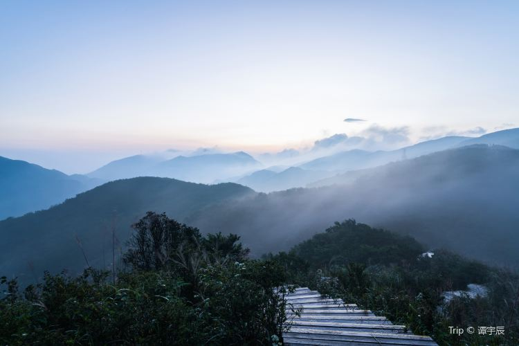 Dawei Mountain National Forest Park1