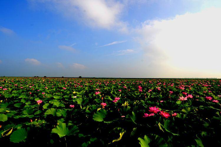 遼河七星湖景區2