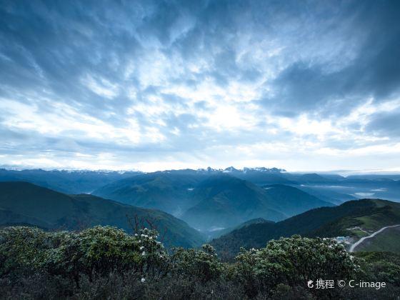 Jiajinshan National Forest Park