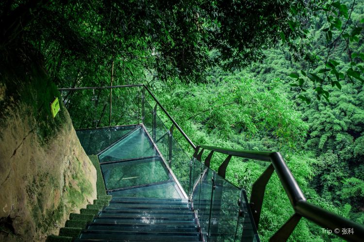 대나무 협곡 풍경명승구(진지계곡)3
