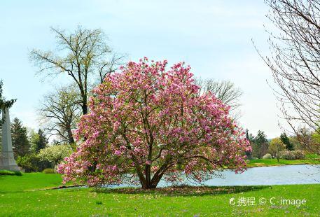 春樹林墓園